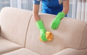 Tips to Getting Rid of Pet Hair from a Couch